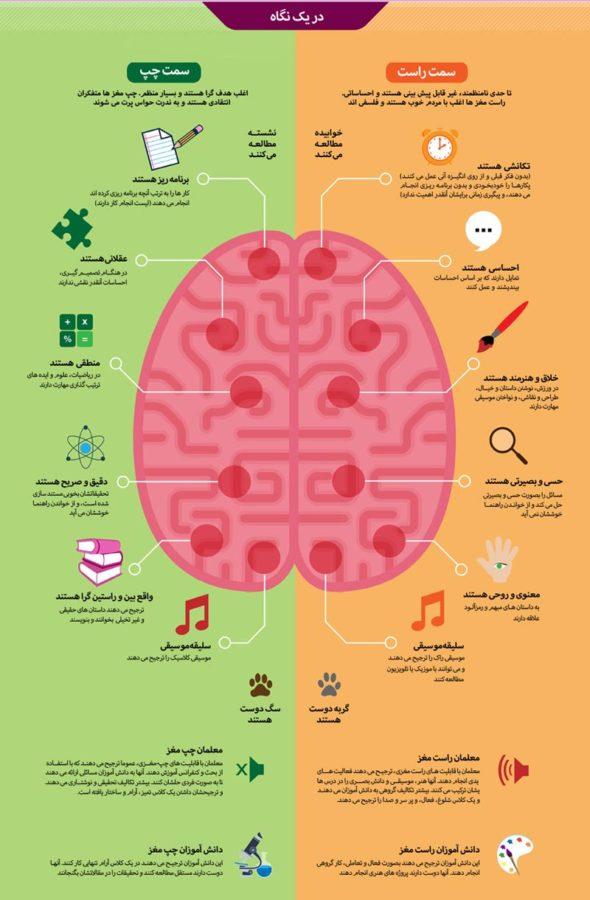 نقش مغز در درک اینفوگرافی
